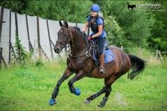 cross-training-roxana