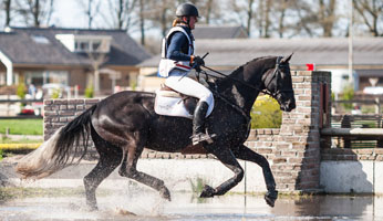 Rider: Roxana GramanNationality: The NetherlandsHorse: ForeverFather: ApacheEvent: SGW RenswoudeDiscipline: Eventing - Cross CountryClass: L paardenLocation: RenswoudeCountry: The NetherlandsDate:18 April 2015